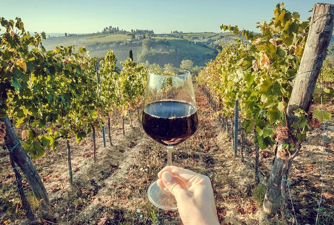 migliori vini toscani