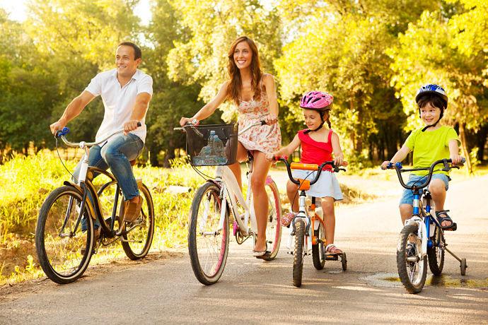 bicicletta caratteristiche