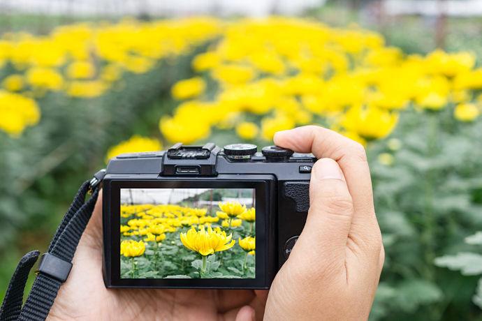 caratteristiche fotocamere economiche