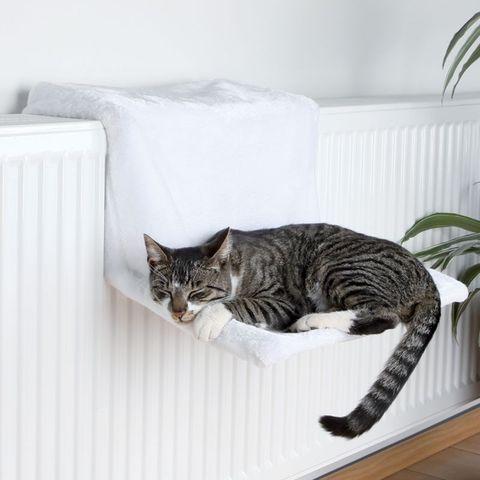 amaca da calorifero per gatti Trixie trovaprezzi