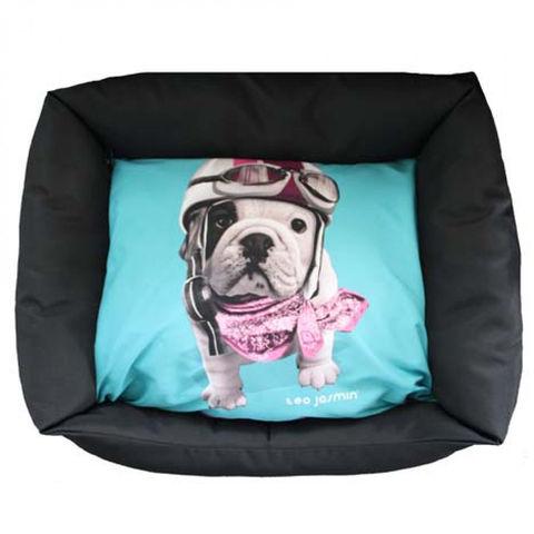 uccia-teo-racing-cane trovaprezzi
