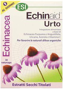 Esi Echinaid Urto