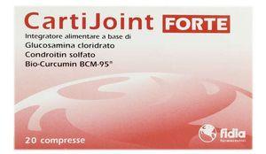 Fidia Cartijoint Forte