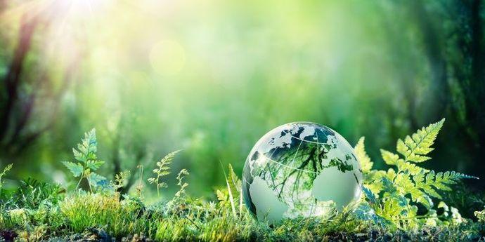 rispettare-ambiente