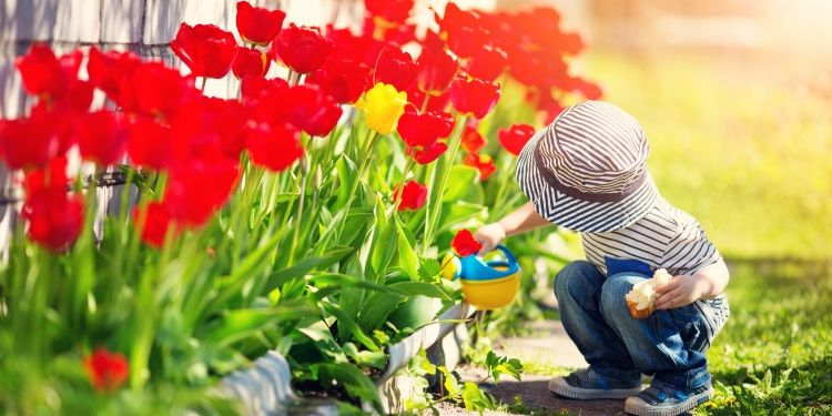 il giardinaggio fa bene alla salute