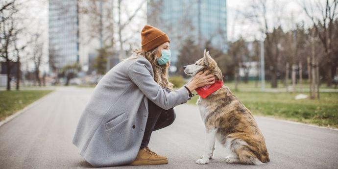 cani e gatti coronavirus
