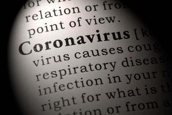 libri coronavirus