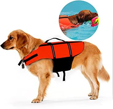 giubbotto salvagente cani