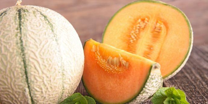 ricette estive con il melone