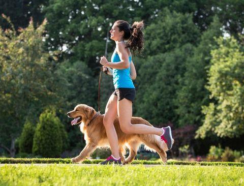 cani e esercizio fisico
