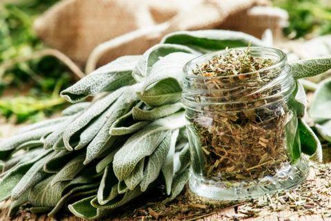 essiccare aromatiche in microonde