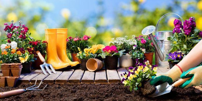 giardinaggio in primavera