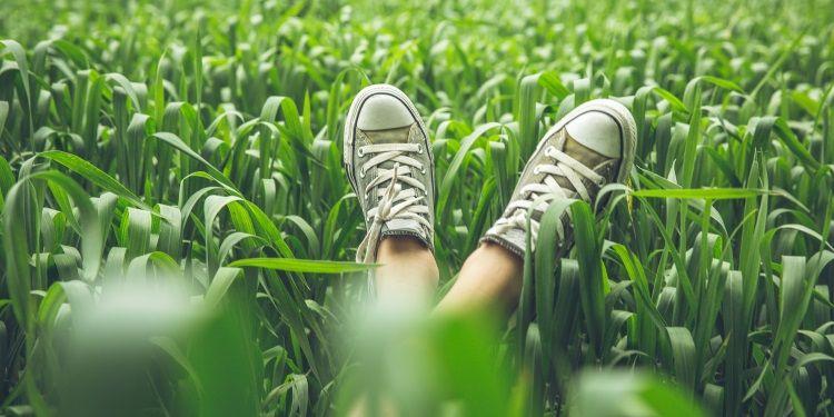 sneakers ecosostenibili