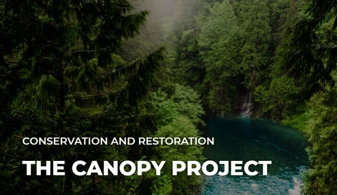 Canopy project