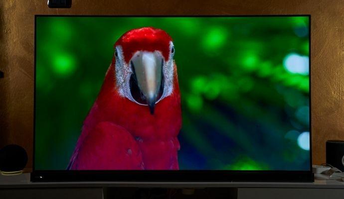 tv calibrato