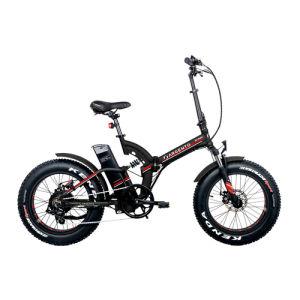 Argento Bike Bi Max