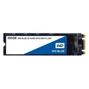 Western Digital Blue 3D NAND SATA SSD M.2