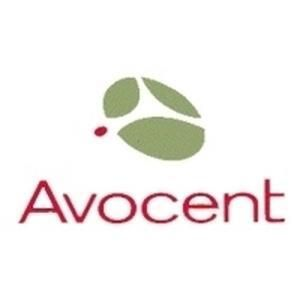 Avocent DSView 4