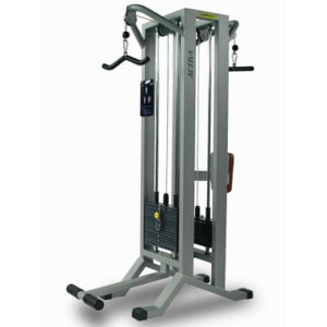 Barigelli Double Triceps Station