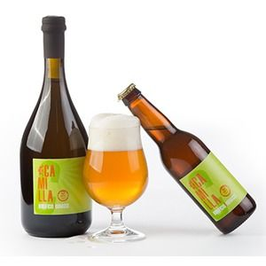 Birrificio Trunasse Camilla
