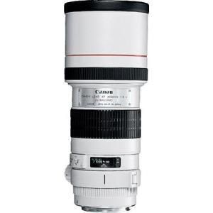 Canon 300mm f/4.0 L IS USM