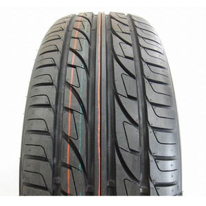 Double Star DS810 205/55 R17 95W XL