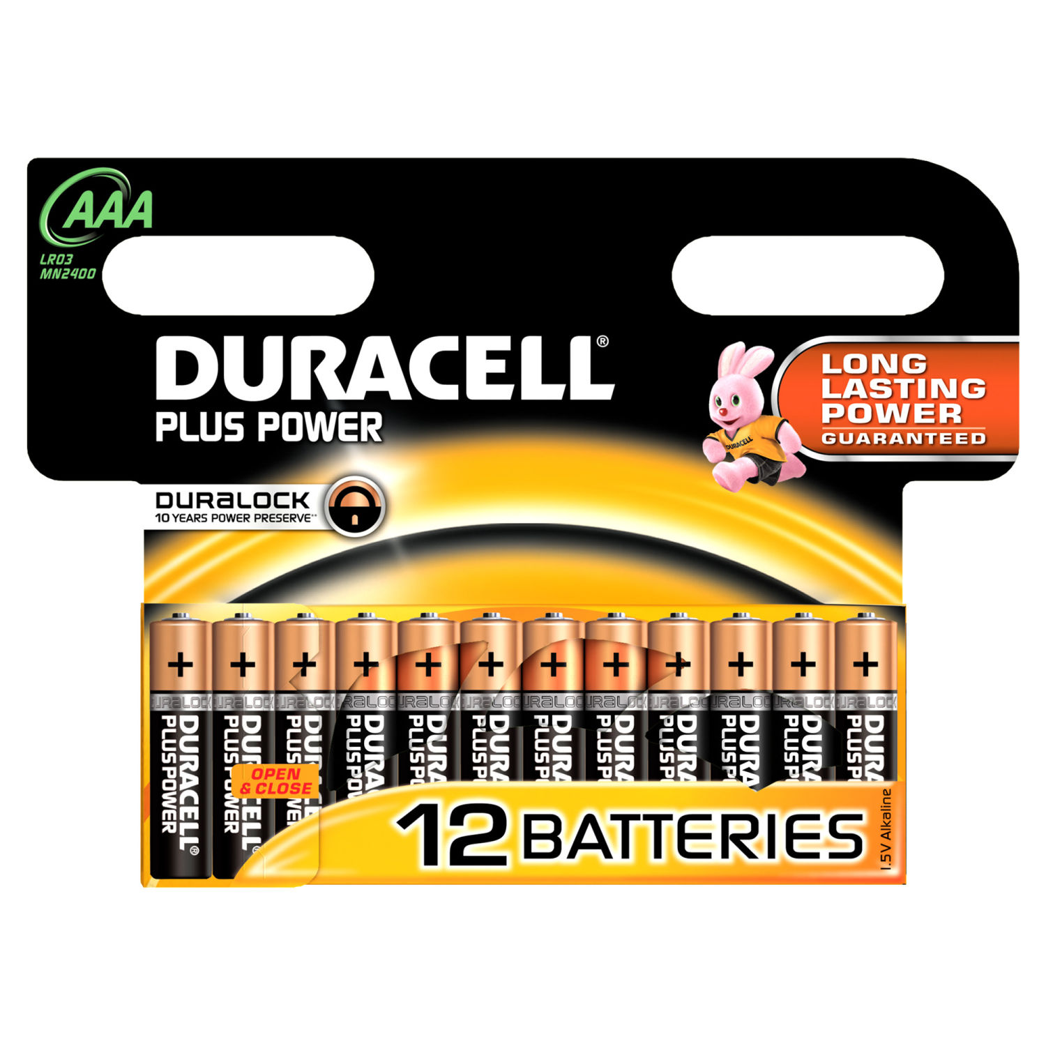 Duracell Plus Power AAA (12 pz)