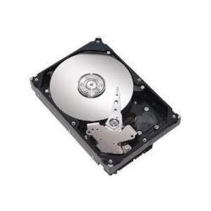 Gateway Hard Disk 300 GB hot swap - 2.5'' - SATA-300 - 10000 rpm