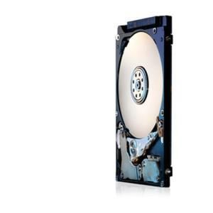 Hitachi Travelstar Z5K320 320 GB - 2.5'' SATA-300 - 5400 rpm