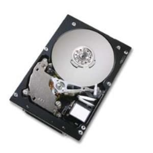 Hitachi Ultrastar 10K300 300 GB - 3.5'' Ultra320 SCSI - 10000 rpm