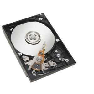 Hitachi Ultrastar A7K1000 500 GB - 3.5'' SATA-300 - 7200 rpm