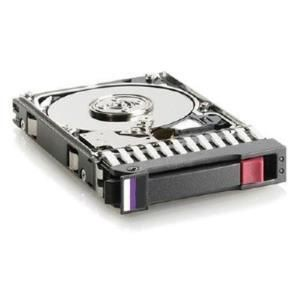 "HP Hard Disk Entry 250 GB hot swap - 3.5"" - SATA-300 - 7200 rpm"