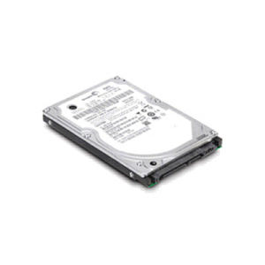 IBM Hard Disk 300 GB hot swap - 3.5'' - SAS - 15000 rpm