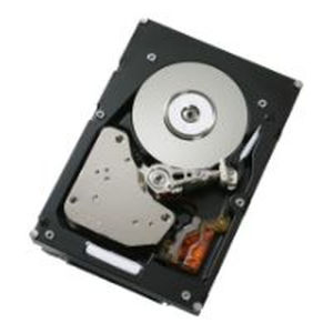 IBM Hard Disk 300 GB hot swap - 3.5'' - SAS-2 - 15000 rpm