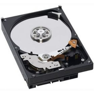 IBM Hard Disk 600 GB hot swap - 4Gb Fibre Channel - 15000 rpm