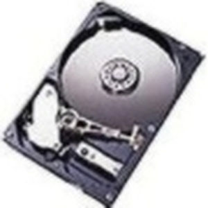 "IBM Hard Disk Storage and I/O Blade Dual Port 1 TB hot swap - 3.5"" - SATA-300 - 7200 rpm"