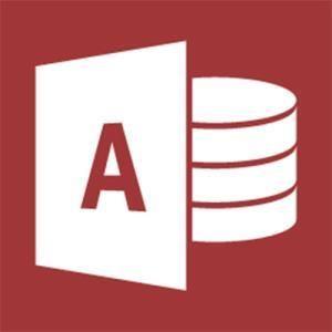 Microsoft Access 2013 (GOV)