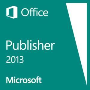 Microsoft Publisher 2013 (MOLP)