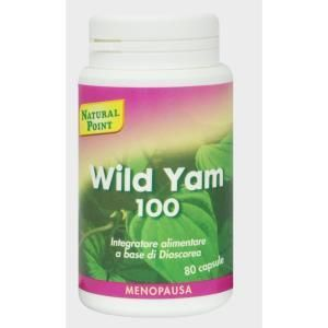 Natural Point Wild Yam 100