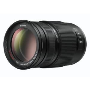 Panasonic Lumix H-FS100300E 100-300mm f/4.0-5.6 G VARIO - Micro Four Thirds
