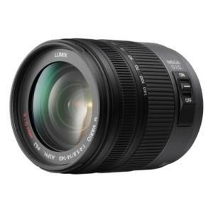 Panasonic Lumix H-VS014140E 14-140mm f/4.0-5.8 G VARIO HD - Micro Four Thirds