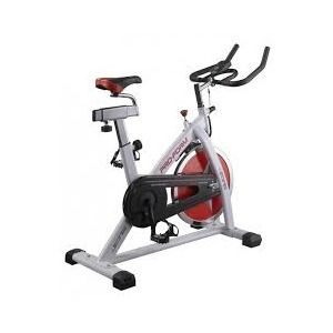 ProForm Speed biking 200