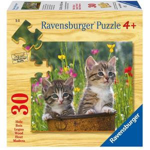Ravensburger Gattini