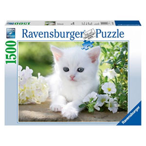 Ravensburger Gattino