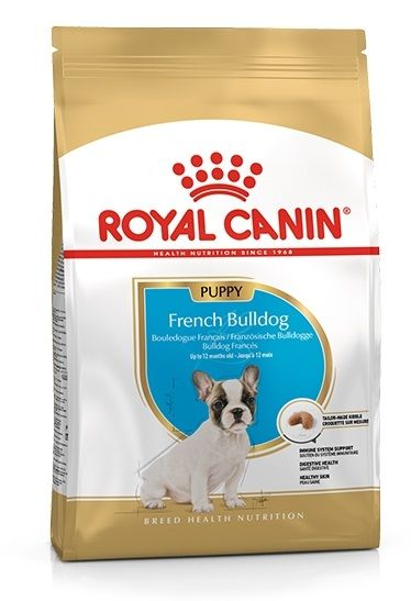 royal canin bulldog francese junior