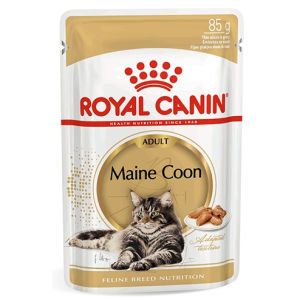 Royal Canin Maine Coon Adult - umido 85g