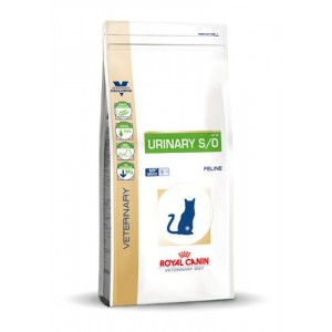 Royal Canin Urinary S/O Gatti