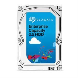 Seagate Enterprise Capacity 3.5 HDD V.5 ST4000NM0055