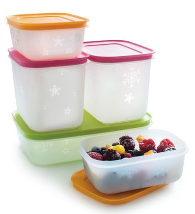 Tupperware Pinguino contenitore freezer