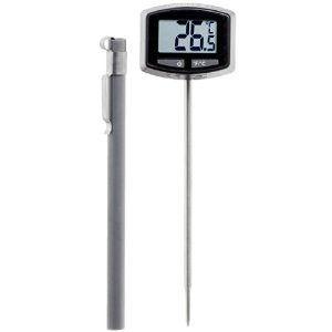 Weber termometro digitale